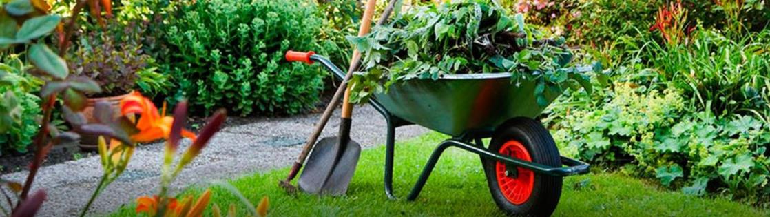 Советы для фермеров, садоводов, дачников.
